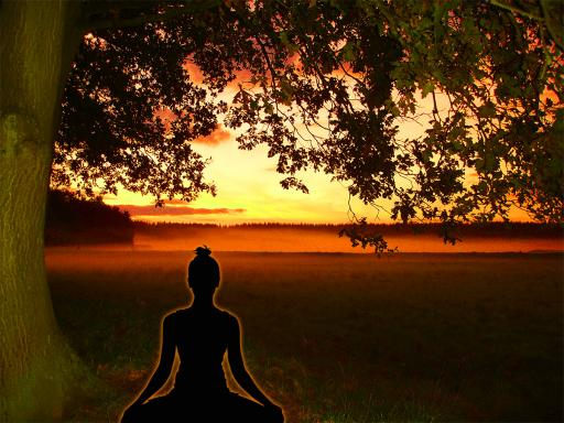 Yogi meditiert unter Bodhi Baum