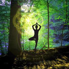 Yoga Haltung Baum Vrikshasana im Wald mit Blume des Lebens