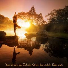 Wanddeko Bild mit B.K.S.Iyengar Yogaspruch & *Glücklich Sein in deiner Yogawelt*