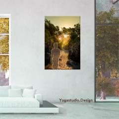 Buddha Lotus Sunset Forest Light