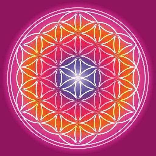 Blume des Lebens im Quadrat Format Farbenfroh