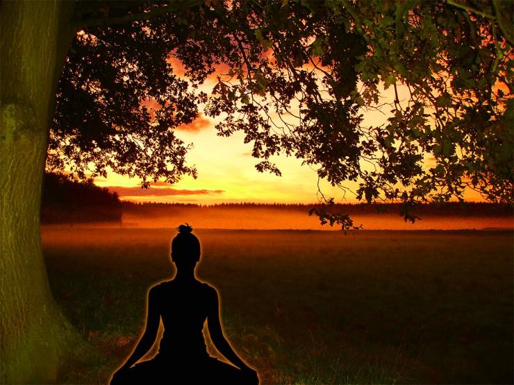 Wanddeko Buddha Lebensbaum